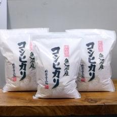 2020年2月発送開始『定期便』【無洗米】お米マイスター厳選魚沼産コシヒカリ100%9kg 全3回