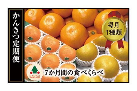【1g1円の最高コスパみかん】甘くておいしいみかんのおすすめランキング!【ふるさと納税】