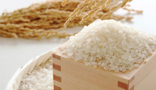 ふるさと納税「米」の月間人気返礼品ランキング