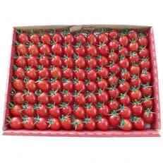 【残留農薬ゼロ】とまとのこころ(アイコとまとプレミアム)約80~100個