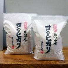 【無洗米】 お米マイスター厳選 魚沼産コシヒカリ100% 6kg(3kg×2袋)