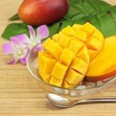 生産拠点産地沖縄県うるま市産「おじーのマンゴー」1箱(2~3玉)約1kg