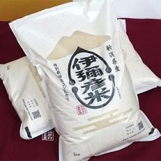 【お家にいよう 応援します】1日50件限定 令和元年産 特別栽培米コシヒカリ「伊彌彦米」10kg
