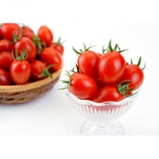 盆地の恵み 冬越ミニトマト「アイコ赤」約2.5kg