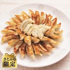 米粉の皮で包んだ餃子60個 【さとふる限定】