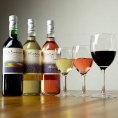 《メイドインフラノ認定》ふらのワイン(赤・白・ロゼ)720ml×3本セット【W2】