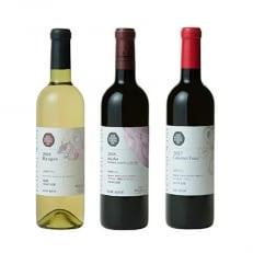 井筒ワイン NACワイン 3本セット