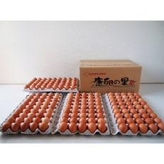 わけありたまご「康卵」Mサイズ(180個)