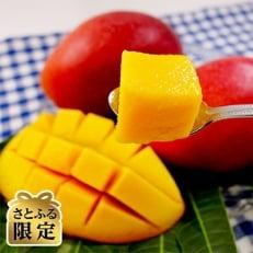 【2020年7月発送開始】沖縄県産マンゴー約2kg(4玉~6玉)[さとふる限定]