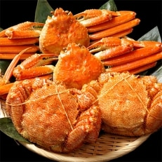 毛ガニ(400g前後×2尾)・本ズワイガニ(500g前後×2尾)食べ比べセット