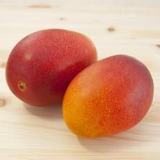 「南国宮崎からお届け」完熟マンゴー中玉3Lサイズ2個