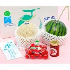 高知県南国市産/フルーツ応援セット(ご家庭用)