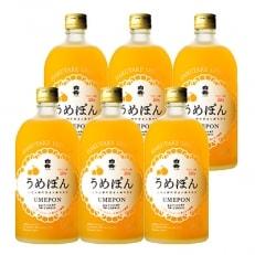 白岳うめぽん(梅酒) 6本セット