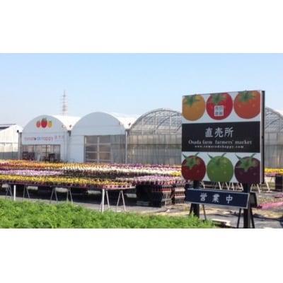 長田農園の直売所で使えるお買物券 3,000円分H004-039