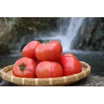 【期間限定】『喜界島トマト』 2kg(10~14玉入り)A-④
