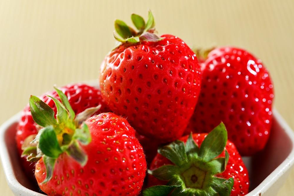 イチゴ、苺、いちご狩り、食べ放題