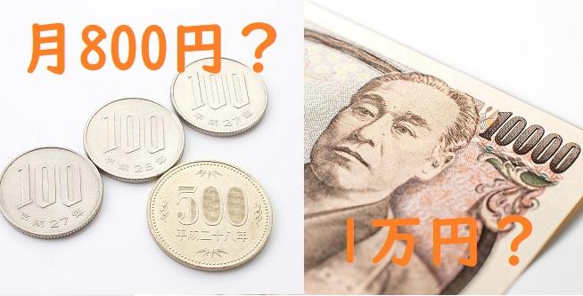 お小遣いは月800円か、1年分1万円か。