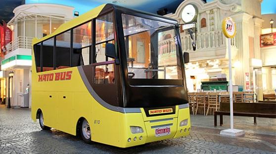 アクティビティの観光バス