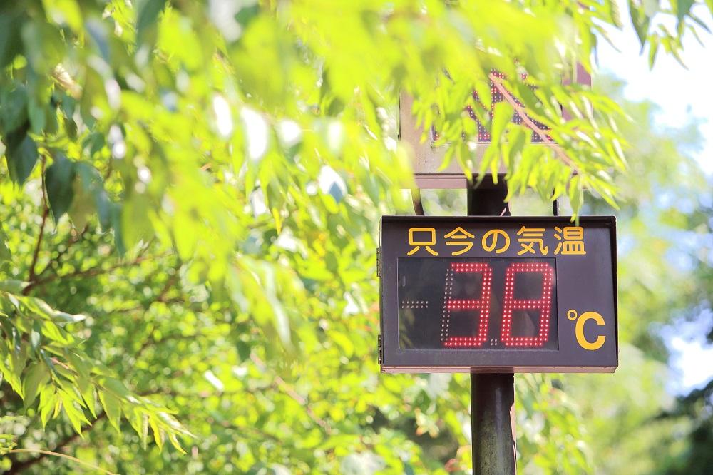 猛暑が続く