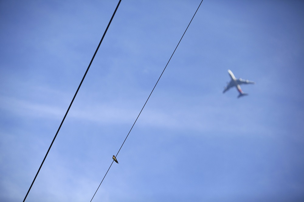 不動産担保に関わる電線と飛行機