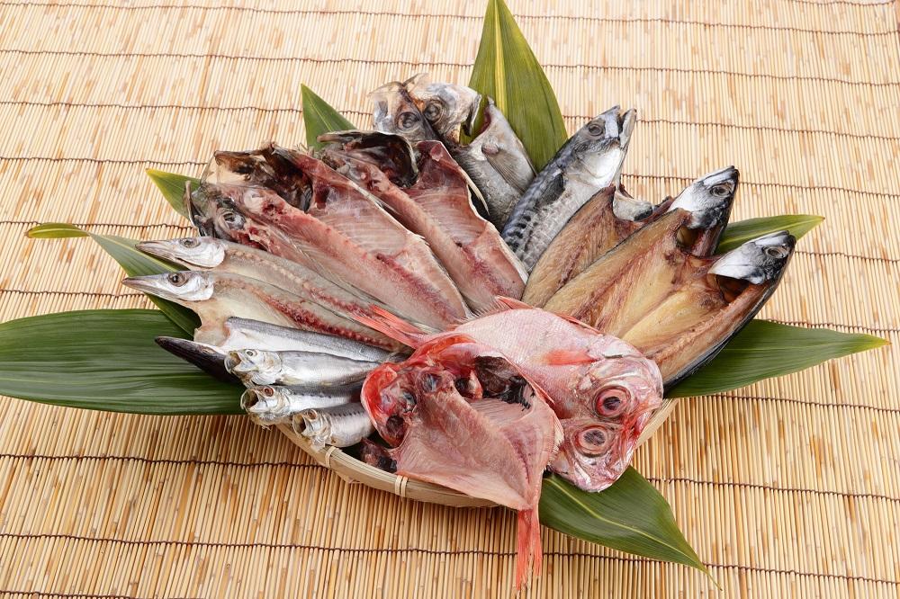 ふるさと納税の魚介類