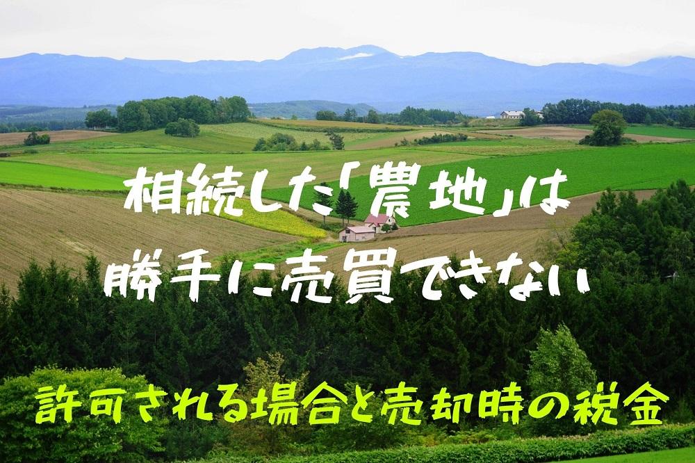相続した「農地」は勝手に売買できない 許可される場合と、売却時の税金について