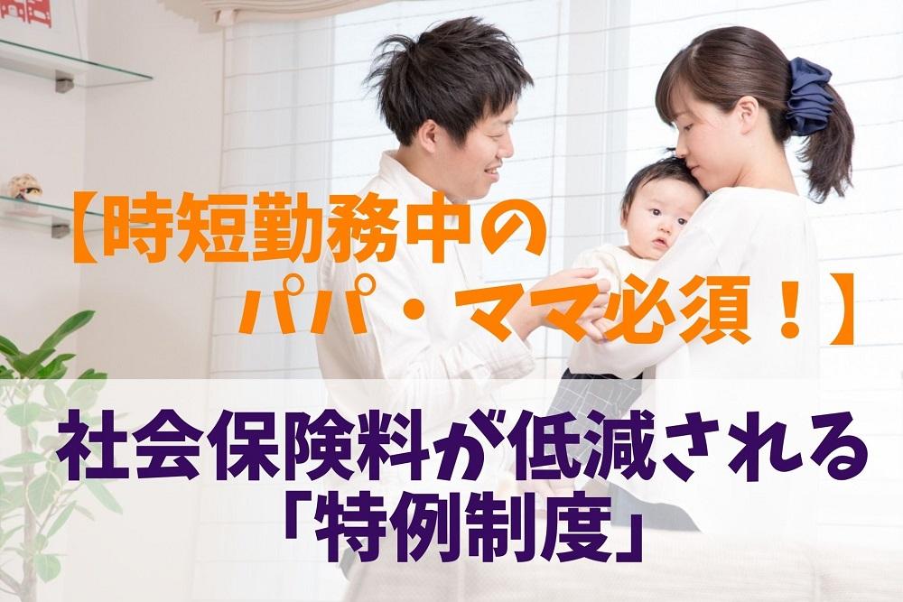 申出 特例 年金 保険 報酬 養育 厚生 書 月額 標準 期間