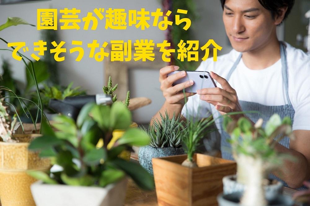 【副業】植物を育てたり仕入れて販売 趣味の園芸を仕事にする方法と注意点
