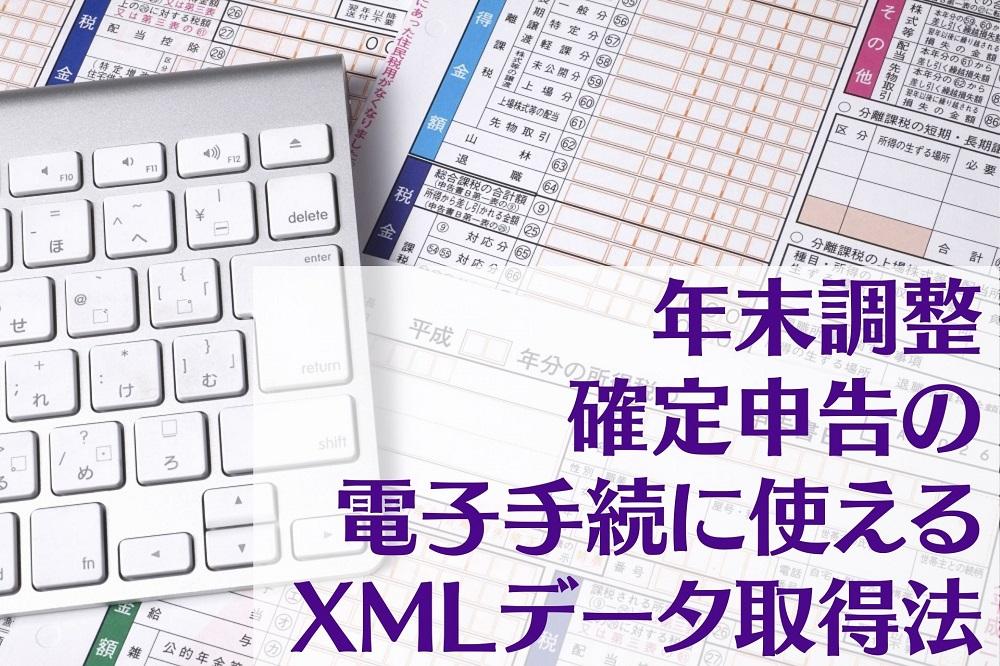 年末調整・確定申告の電子手続に使えるXMLデータ取得法:保険会社サイト・マイナポータル連携の2種類