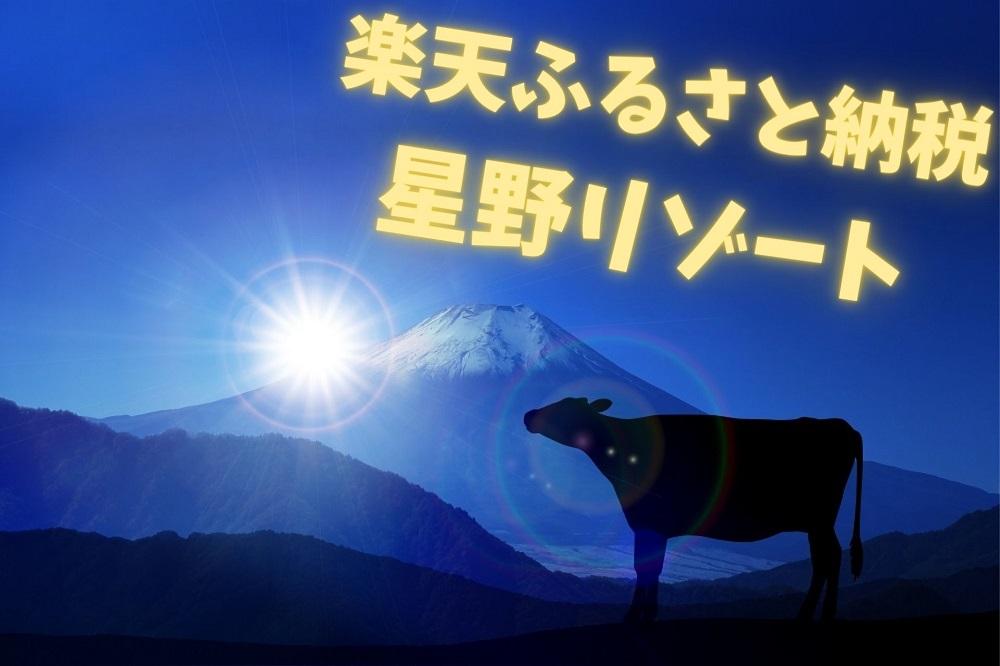 【楽天ふるさと納税】憧れ星野リゾート 寄付金額1~10万円のプラン7選